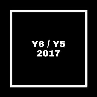 Y6 / Y5 2017